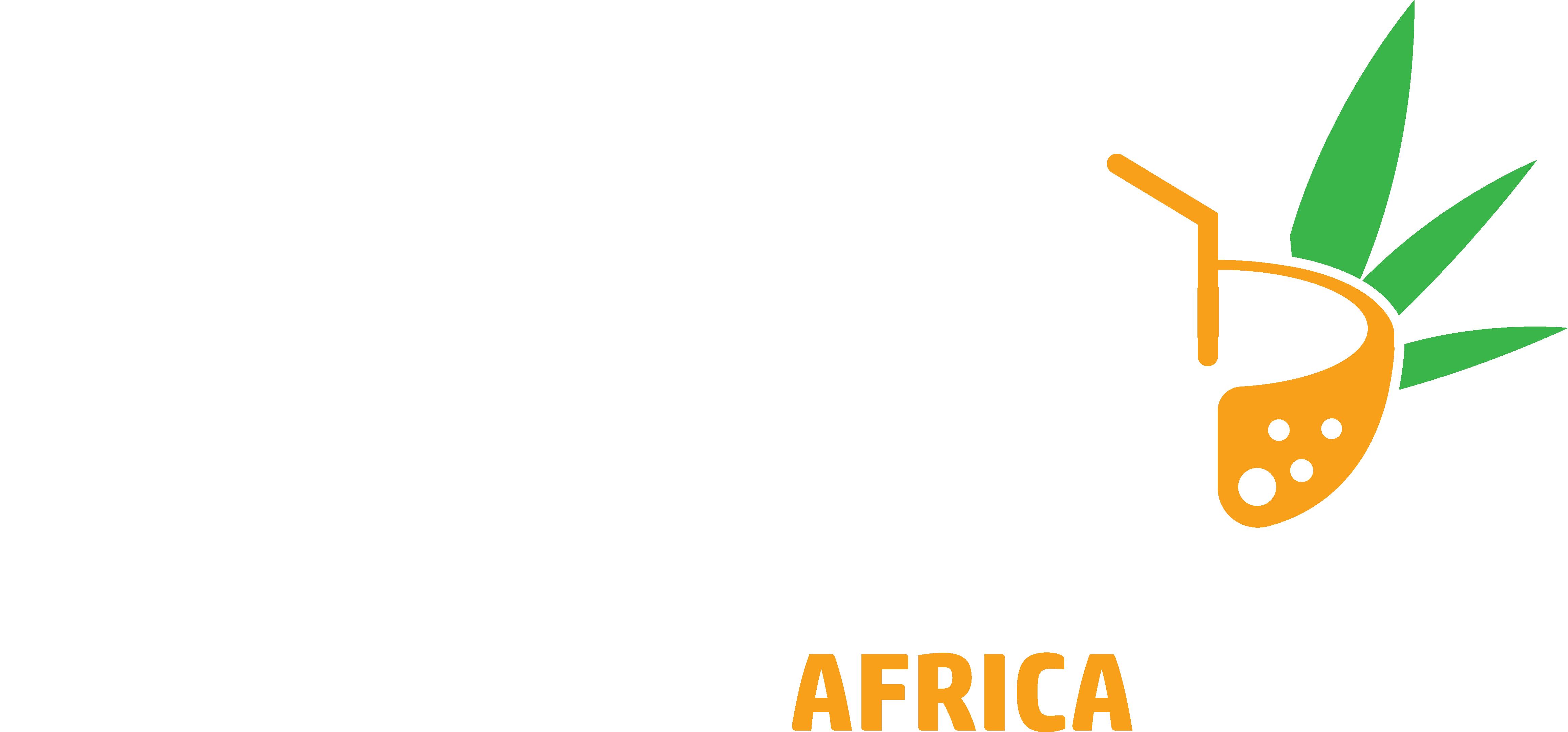 Home - Evacay Africa Kenya Safari Tours | Africa Safari Holidays